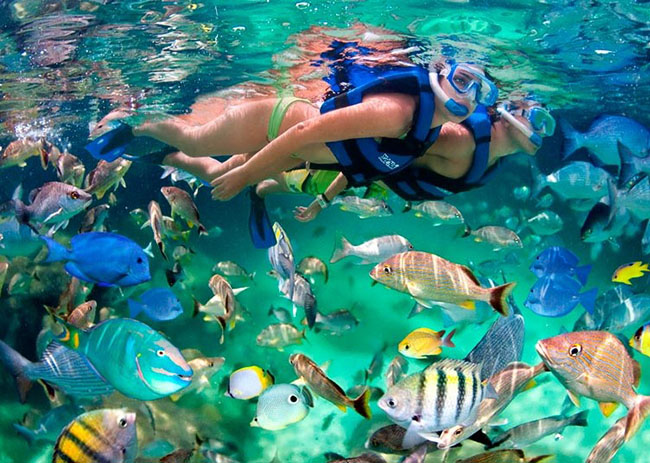 Joie and her boyfriend amazed by the colorful and vast fish they saw in the waters of Cozumel.